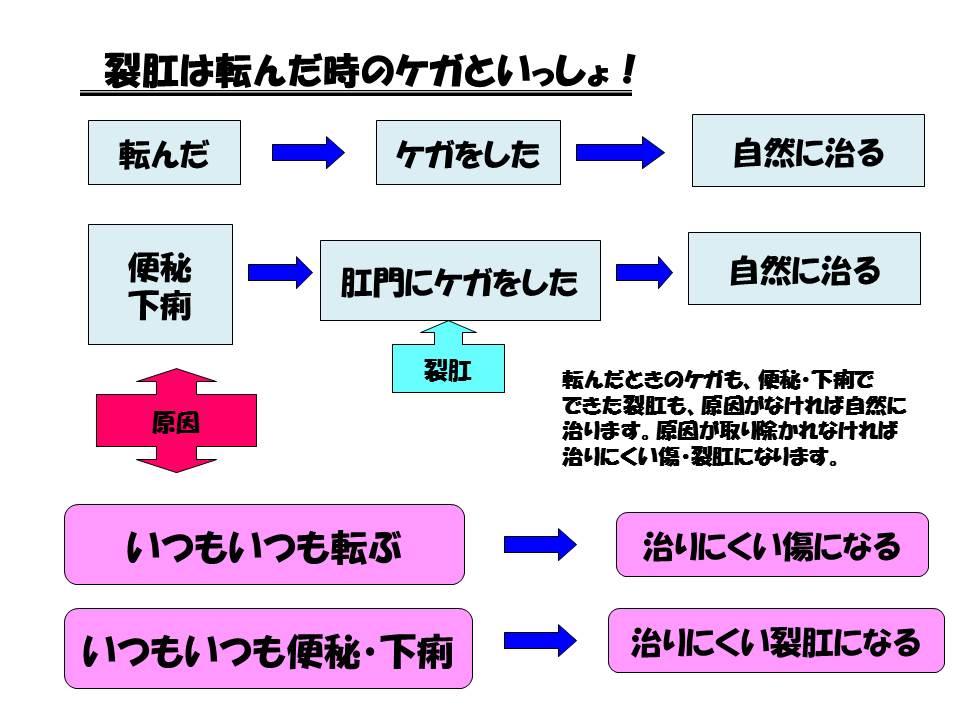 切れ痔(裂肛)の痛みは、まずは排便の調整と保存的治療を肛門科・渡邉医院(京都)では行っています。新着ランディングページこのページに付けられているタグ